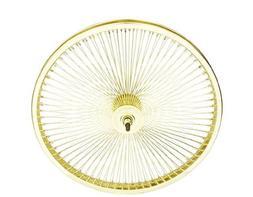 "20"" 144 Spoke Front Wheel 14G Gold. Bicycle wheel, bike whee"
