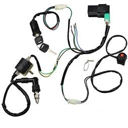 Minireen Wire Harness Wiring Loom CDI Ignition Coil Spark Pl